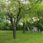 Détente et parc fleuri en location chambre avec piscine près du Puy du Fou Vendée
