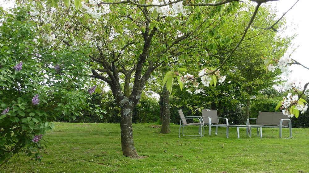 Location Chambre Avec Piscine Puy Du Fou Vend E