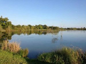 Les étangs de Pescalis, une balade nature à 20 minutes des chambres d'hôtes La Boisnière